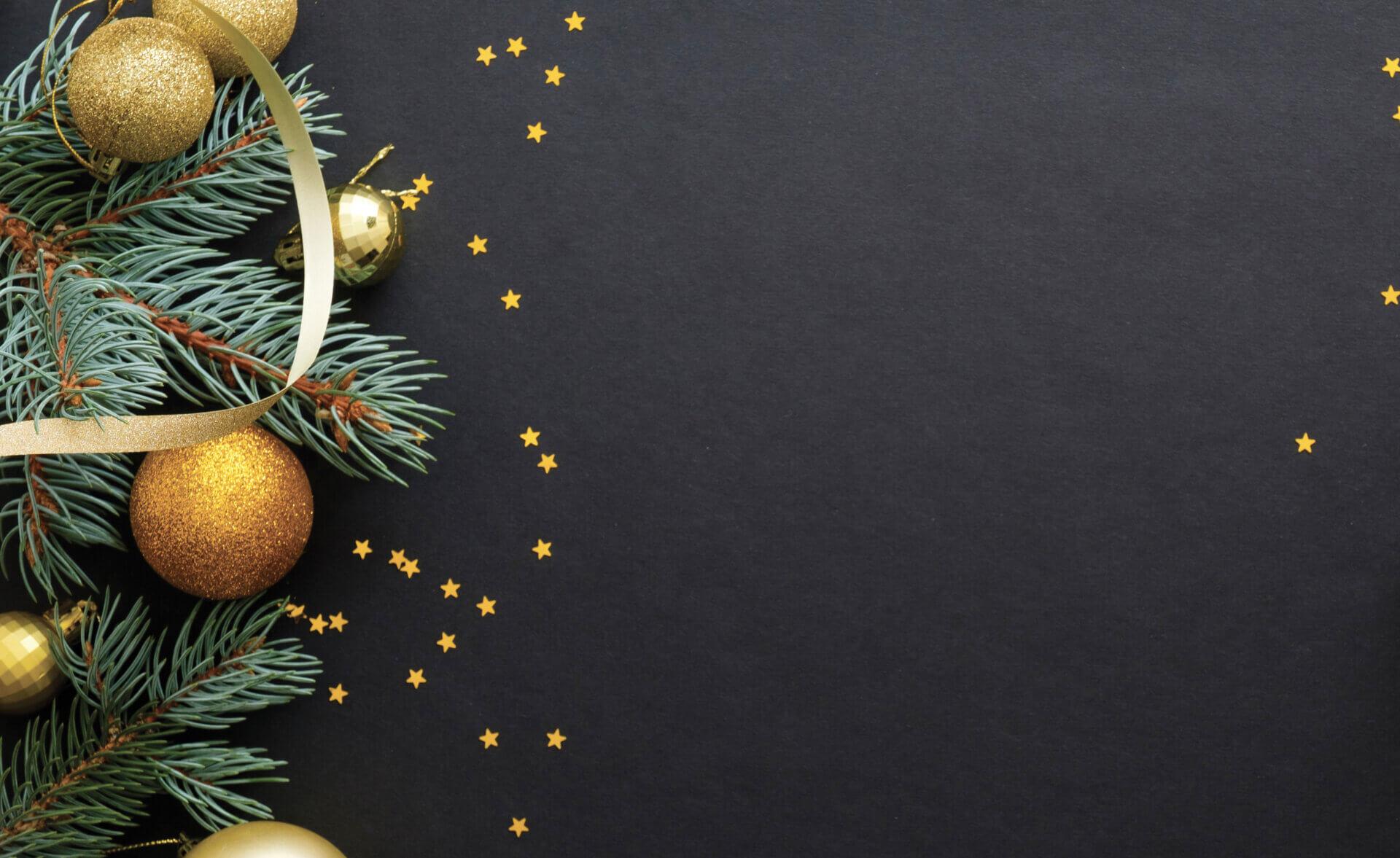 Conférence : Sapin de Noël, forêts et bois aux Fêtes – Facebook live