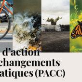 Lancement du Plan d'action aux changements climatiques